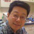 Jun Yan picture