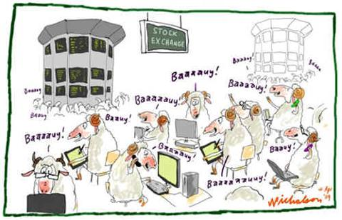 Stock Market Sheep