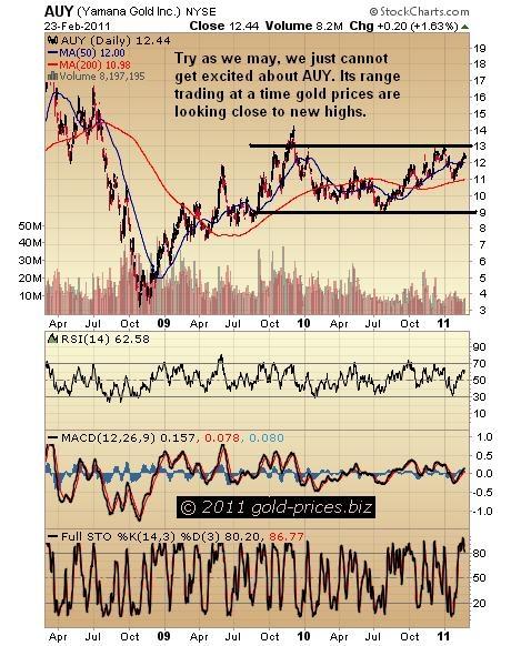 AUY Chart 24 Feb 2011.JPG