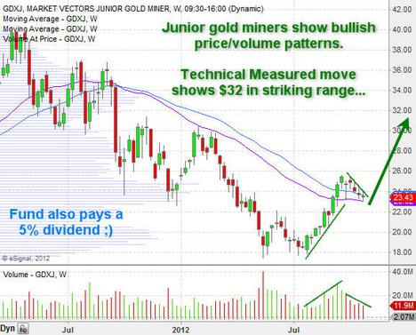 Junior Gold Miners