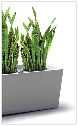 Fibreglass Planter - Trough