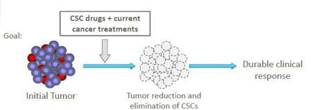 The use of CSC drugs + current cancer treatments will result in tumor reduction and elimination of CSCs and so elimination of ability to recur.