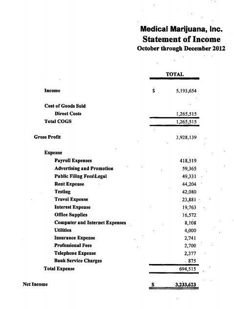 Income Statement – Simple Income Statement