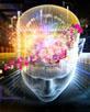 brainandnumbers82