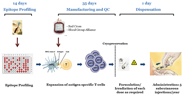 Single Cycle Manufacturing Process: Annual Course of Treatment (5 Doses) From One Blood Draw