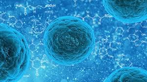 Stem cells are undifferentiated cells which are capable of differentiating into any type of cell that make-up the human body and thus, are capable of producing non-regenerative cells such as neural and myocardial cells. This report estimates the market for global stem cells in terms of revenue (USD billion) for the period 2012 - 2018, keeping 2011 as the base year. The global stem cells market is mainly segmented into four major sub-types namely market by products, market by technology, market by applications and market by geography.