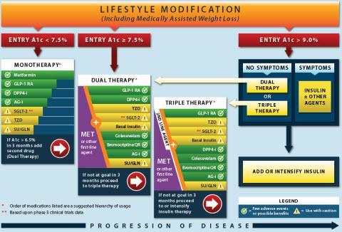 Ada algorithm for type 2 diabetes 2013 pdf